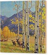 Elk Herd In Aspen Grove Wood Print