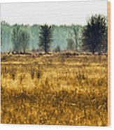 Elk In The Distance No. 1 Wood Print