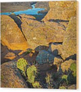 Elk Mountain Sunset Wood Print