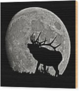 Elk Silhouette On Moon Wood Print