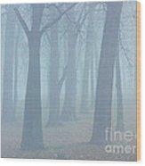 Elkhart Fog Wood Print