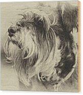 Ella Bella Boo Wood Print
