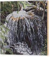 Ellen's Waterfall Wood Print