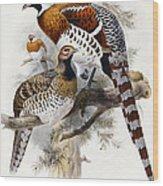 Elliot's Pheasant Wood Print by Joseph Wolf