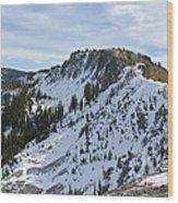 Ellis Peak Trail 5 Wood Print