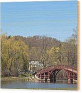Elm Park Bridge Wood Print