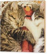 Elmos Nap Time---soft Look Wood Print