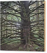 Elsewhere Wood Print