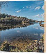 Elsi Reservoir Wood Print