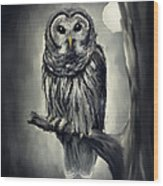 Elusive Owl Wood Print