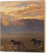 Elusive Wild And Free Mustangs Wood Print by Jeanne  Bencich-Nations