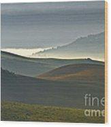 Embalses Del Guadalteba Landscape - Andalusia Wood Print