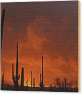 Embers Of The Day Wood Print