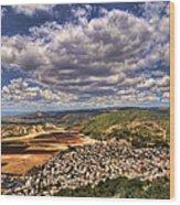 Emek Israel Wood Print