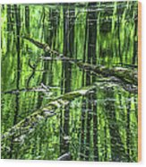 Emerald Reflections Wood Print