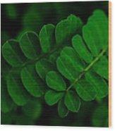Emerald Bracelets Wood Print