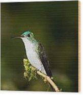 Emerald Brilliant Wood Print