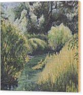 Emerald Creek Wood Print