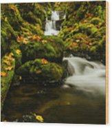 Emerald Falls In Columbia River Gorge Oregon Usa Wood Print