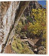 Emerald Falls Zion National Park Wood Print