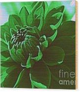 Emerald Green Beauty Wood Print