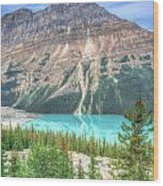 Peyto Lake 7 Wood Print