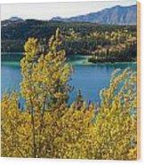 Emerald Lake At Carcross Yukon Territory Canada Wood Print