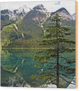 Emerald Lake Reflection And Pine Tree In Yoho National Park-british Columbia-canada Wood Print