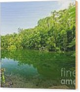 Emerald Pool Wood Print by Atiketta Sangasaeng