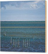 Emerald Seas Wood Print