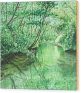 Emerald Stream Wood Print