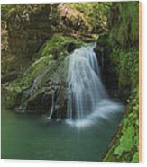 Emerald Waterfall Wood Print by Davorin Mance