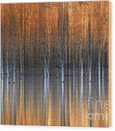 Emerging Beauties Reflected Wood Print