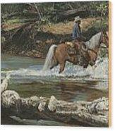 Palomino Crossing Big Creek Wood Print