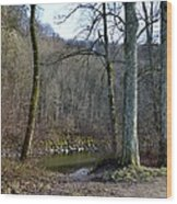 Emme's Bank Wood Print