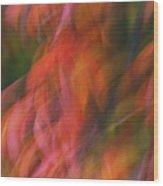 Emotion In Color Wood Print