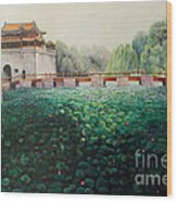 Emperor's Summer Palace Wood Print