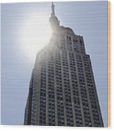 Empire State At Hign Noon Wood Print