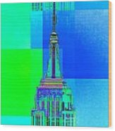 Empire State Building 5 Wood Print