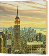 Empire State Building In The Evening Wood Print by Sabine Jacobs