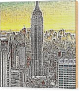 Empire State Building New York City 20130425 Wood Print
