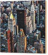 Empire View Wood Print
