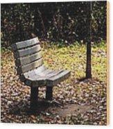 Empty Bench Meditation Spot Wood Print