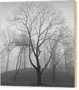Empty Wood Print