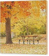 Empty Park On A Fall Day Wood Print