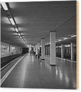 empty Potsdamer Platz s-bahn station Berlin Germany Wood Print by Joe Fox