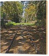 Empty Railroad Tracks Wood Print