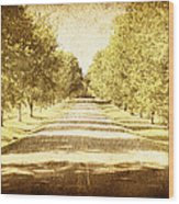 Empty Road Wood Print