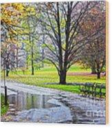 Empty Walkway On A Beautiful Rainy Autumn Day Wood Print