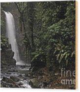 Encantada Waterfall Costa Rica Wood Print